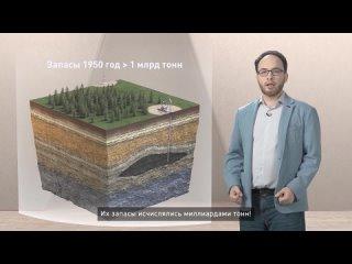 Лекторий_ люди о нефти и технологиях.