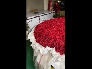 2328 розы для Сяо Чжаня от bxg