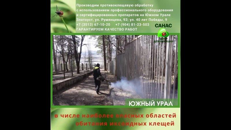 Южный Урал занимает 2 место по обитанию иксодовых клещей