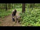 Video_20210702_115149.mp4