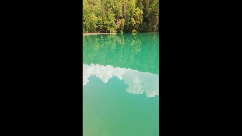 Видео от Елены Сидорец