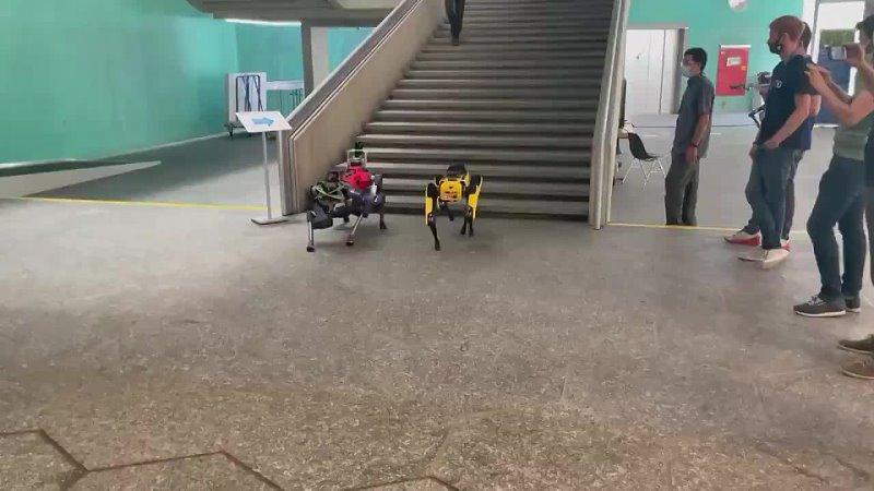 Видео от Boston Dynamics Выходит Из Карантина