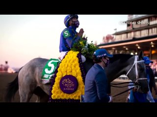 An undefeated grey colt named Essential Quality leads as the early 2-to-1 favorite ahead of Saturday's Kentucky Derby