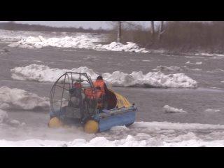 Видео операции по спасению собак на острове посередине Томи в черте Томска.