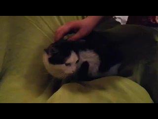 Чубайс и его команда kullanıcısından video