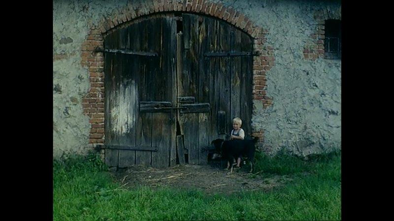 Cisza Małgorzata Szumowska Poland 1997