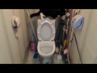 Филя в туалете