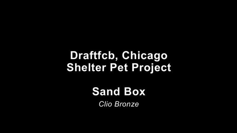 Shelter Pet Project Sand Box Clio Bronze 2012 PSA Cat humor mpg