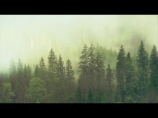 [Relax Baby - DEEP SLEEP] Rain Sleep Sounds (4 hours) - NO ADS IN THE MIDDLE OF THE VIDEO