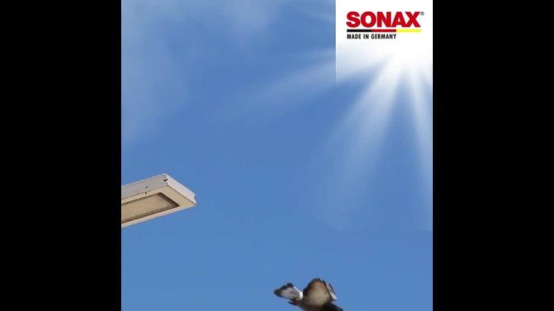 SONAX. Лучшая защита от неприятностей