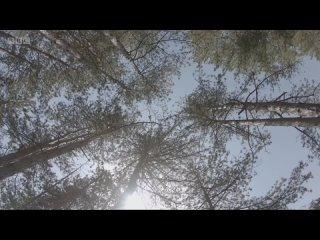 """АО """"НПЦ """"Недра"""" kullanıcısından video"""