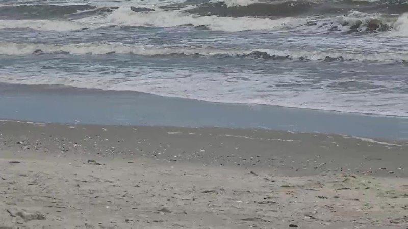 [Eugene Vlogs] Купаемся в Океане в Северной Каролине 2021