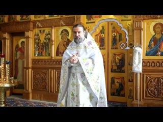 Архимандрит Кирион (Радионов). Проповедь перед Причащением в Лазареву субботу