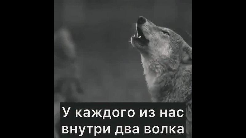 Мудрые слова ☝️