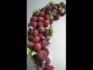 """торт """"сникерс"""", декор свежими ягодами и надписью из крема"""
