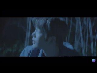 210620 The Wolf: Last Descendants 🐺 - Teaser