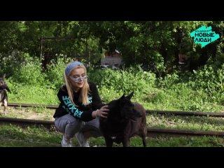 Новые люди снова помогли животным