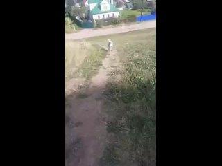 """Video by """"МЫ ВМЕСТЕ"""" волонтерское движение"""