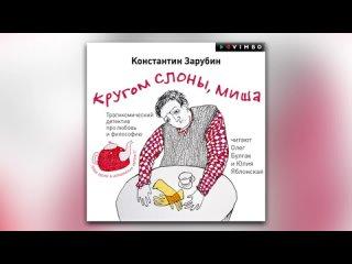 Константин Зарубин - Кругом слоны, Миша (аудиокнига)
