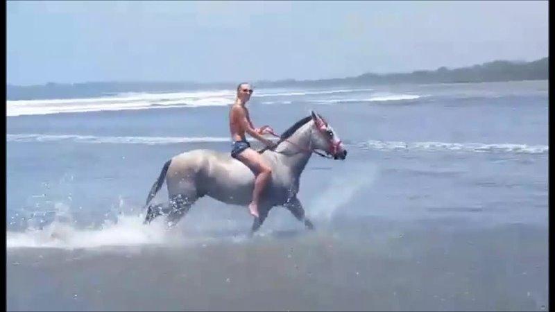 Costa Rica Horseback Riding lyrics © Sony ATV Music Publishing LLC Kobalt Music Publishing Ltd