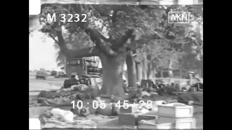 7 августа 1941 г раненые советские военнопленные