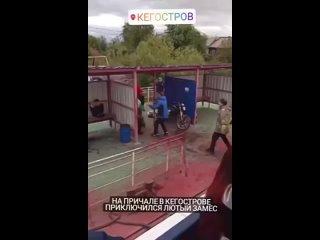 Видео от ПЛОХИЕ НОВОСТИ