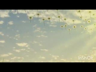 """Видео от БДОУ г.Омска """"Детский сад №94 общеразвивающего в"""