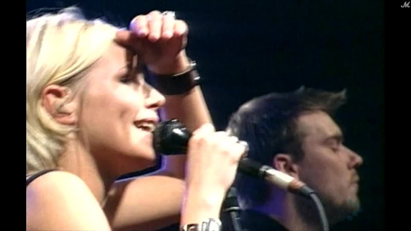 The Cardigans Your New Cuckoo