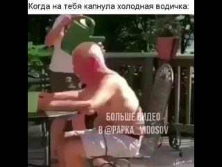 papka_vidosov+
