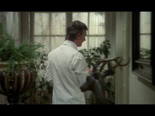Этот смутный объект желания (1977) Луис Бунюэль