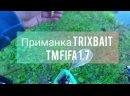 InShot_20210713_092915905.mp4