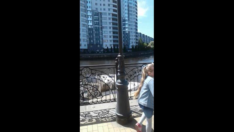 Видео от Anna Krauze