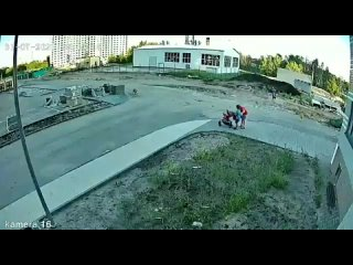 Стая собак набросилась на семью с коляской в воронежском ЖК: появилось видео