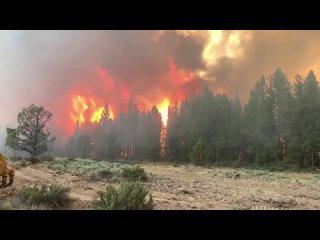 🔥 Пожары у границы Невады и Калифорнии