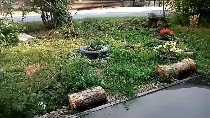 Видео от Кинешма 24