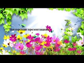 Video by Tatyana Polevschikova