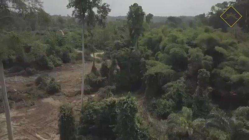 Видео от Криптовалюта Gana