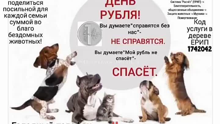 VID_20210713_102635_290.mp4