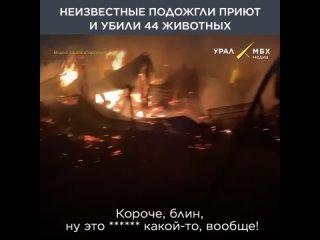 В пожаре из-за поджога погибли 44 животных