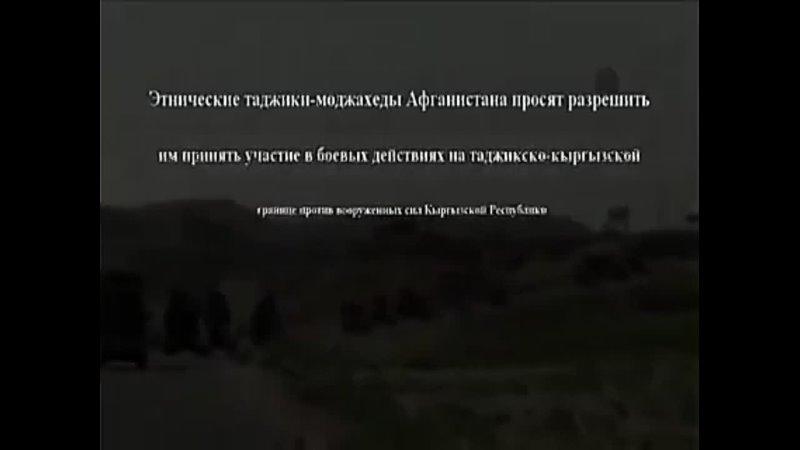 Таджики- маджахеды Афганистана просят разрешить им участвовать в боевых действиях на границе с Киргизией