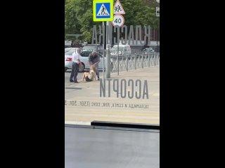 «Посетители кричали, что на улице бьют девушку» очевидцы сообщили о жёстком задержании на Грига (видео) - Новости Калинингр.mp4