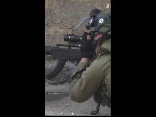 Камень vs израильский снайпер