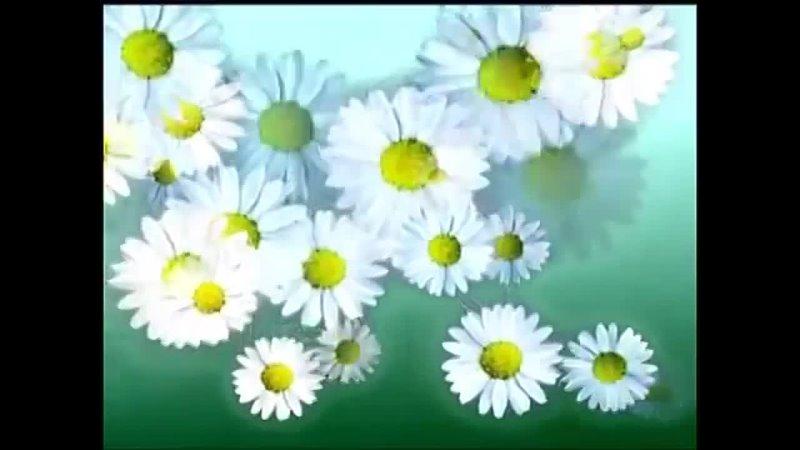 Видео от Татьяны Крутовой