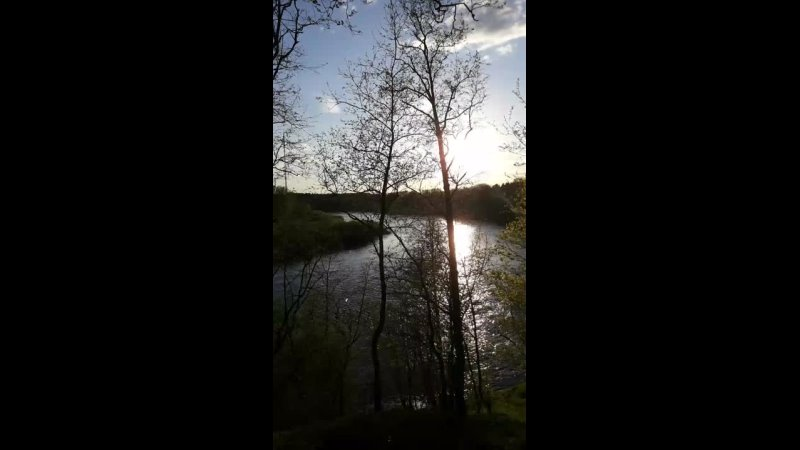 Кингисепп Река Луга у районе ул Жукова будущей смотровой площадки 13 мая 2021 года