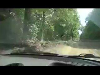 Видео от СРОЧНЫЕ НОВОСТИ