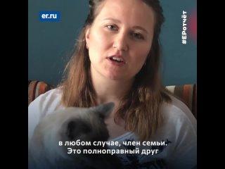«Единая Россия» выступает в интересах владельцев домашних животных!