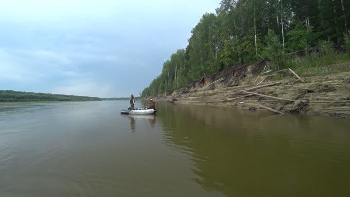 Видео от Михаила Ефимовича