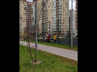 Video by Сводки от ополчения Новороссии