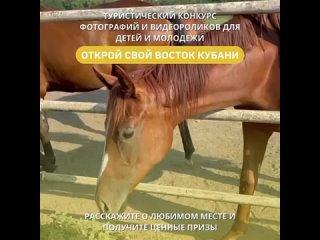 Видео от Молодежка Новокубанский район