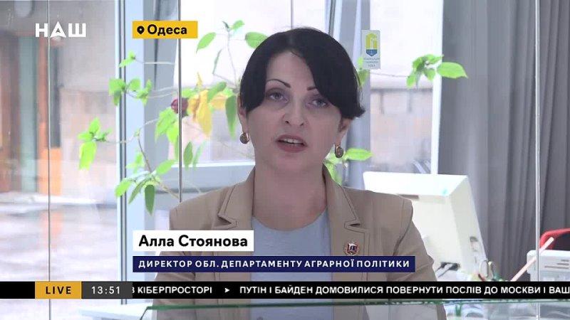 Фермери Одещини потерпають від негоди Чи варто розраховувати на допомогу держав
